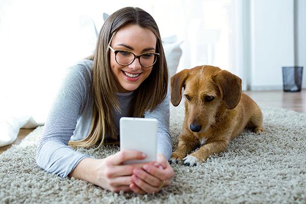 mobile et chien